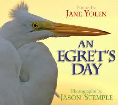 Cover of An Egret's Day by Jane Yolen and Jason Stemple